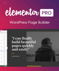 Elementor PRO WordPress Page Builder